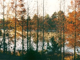 Wateree River - Kershaw SC 1998