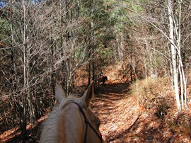 Trail Ride - Earl's Ford SC