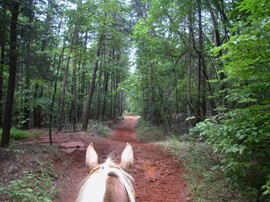 Trail Ride - Croft State Park, Spartanburg SC